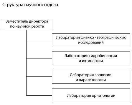 Структура научного отдела
